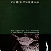 The Birds World of Song by Unspecified