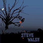 Play & Download Steve Walsh by Steve Walsh | Napster