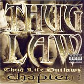 Thug Life Outlawz Chapter 1 by Various Artists