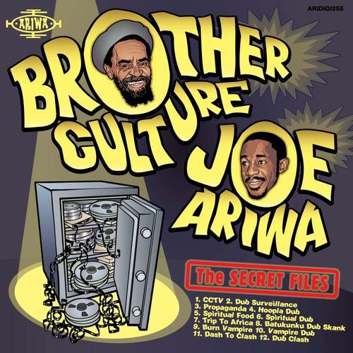 The Secret Files by Joe Ariwa