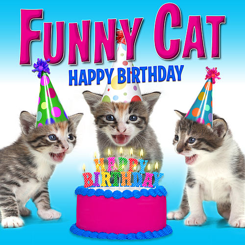 Happy Birthday Funny Cats Singing Version Single Von