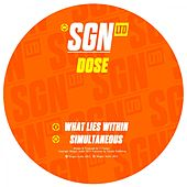 Play & Download What Lies Within / Simultaneous by Dose | Napster