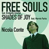 Play & Download Free Souls / Shades of Joy by Nicola Conte | Napster