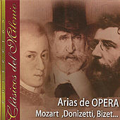 Play & Download Clásicos del Milenio, Arias de Opera, Mozart, Donizetti, Bizet... by Various Artists | Napster