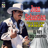 Play & Download El Rey Del Jaripeo by Joan Sebastian | Napster