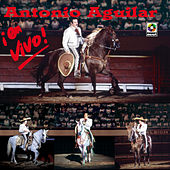 Play & Download En Vivo! - Antonio Aguilar by Antonio Aguilar | Napster