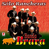 Play & Download Solo Rancheras by Banda Brava | Napster
