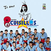 Play & Download Te Amo by Banda Cuisillos | Napster