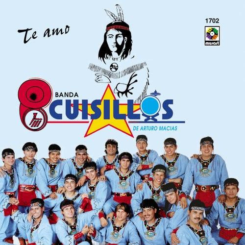 Te Amo by Banda Cuisillos