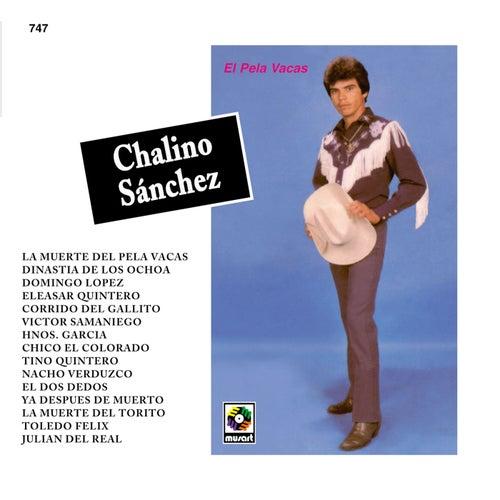 Play & Download El Pela Vacas by Chalino Sanchez | Napster