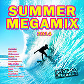 Summer Megamix 2014 by Various Artists