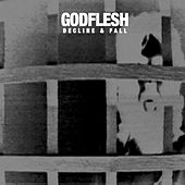 Play & Download Decline and Fall by Godflesh | Napster