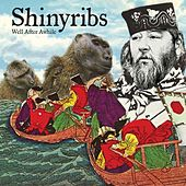 Well After Awhile by Shinyribs