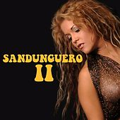Sandunguero II by Various Artists