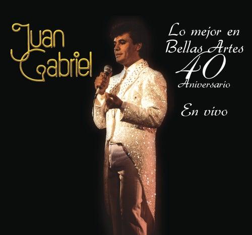 Play & Download Lo Mejor en Bellas Artes - 40 Aniversario by Juan Gabriel | Napster