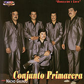 Play & Download Conjunto Primavera, Vol. 1 by Conjunto Primavera | Napster