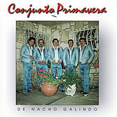 Play & Download De Nacho Galindo by Conjunto Primavera | Napster
