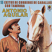 Play & Download 15 Corridos De Caballos - Antonio Aguilar by Antonio Aguilar | Napster