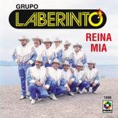 Reina Mia by Laberinto