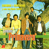 Play & Download Lo Vas a Negar by Conjunto Primavera | Napster