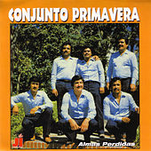 Play & Download Almas Perdidas by Conjunto Primavera | Napster