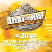 Play & Download Arena de Ouro 2014 by Various Artists | Napster