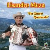 Sin Querer Queriendo by Lisandro Meza