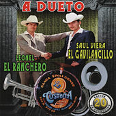 Play & Download A Dueto 20 Exitos de Coleccion by Various Artists | Napster