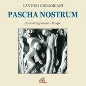 Play & Download Pascha nostrum (Canto gregoriano) by Fulvio Rampi Cantori Gregoriani | Napster