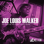 Play & Download The Best Of The Stony Plain Years by Joe Louis Walker | Napster