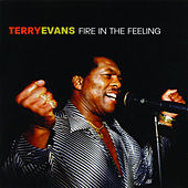 Fire In The Feeling by Terry Evans