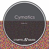 Play & Download Inside You by Cymatics | Napster