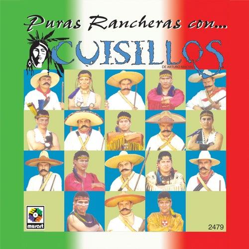 Play & Download Puras Rancheras Con Cuisillos by Banda Cuisillos | Napster