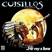 Play & Download No Voy A Llorar by Banda Cuisillos | Napster