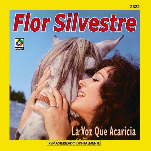 La Voz Que Acaricia by Flor Silvestre