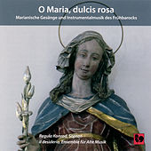 O Maria, dulcis rosa von Various Artists
