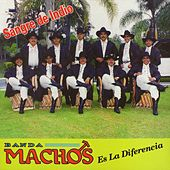 Play & Download Sangre De Indio by Banda Machos | Napster