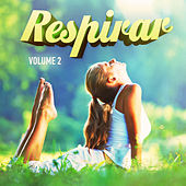 Play & Download Relájate y Respira, Vol. 2 (Música Relajante para Calmarte) by Various Artists | Napster