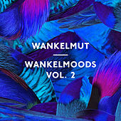 Play & Download Wankelmoods, Vol. 2 by Wankelmut | Napster
