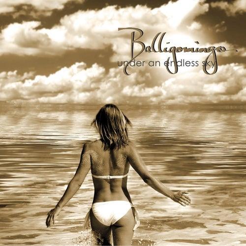 Under an Endless Sky by Balligomingo