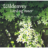 Wildenvey I Ord Og Toner by John Surman