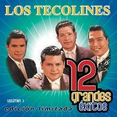 12 Grandes exitos Vol. 1 by Los Tecolines