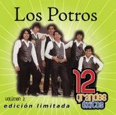 Play & Download 12 Grandes exitos Vol. 2 by Los Potros | Napster
