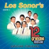 Play & Download 12 Grandes exitos Vol. 2 by Los Sonor's | Napster