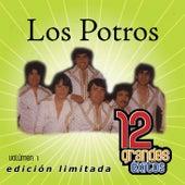 Play & Download 12 Grandes exitos Vol. 1 by Los Potros | Napster