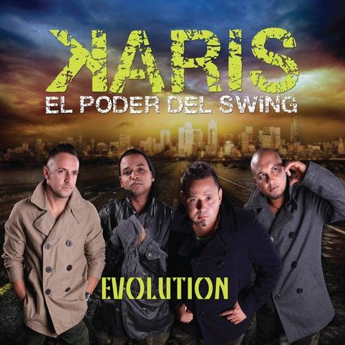 Evolution by Karis
