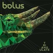 Triangulate by Bolus