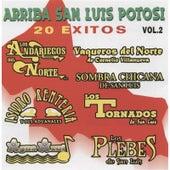Play & Download Arriba San Luis Potosi, Vol. 2 by Various Artists | Napster