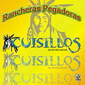 Play & Download Rancheras Pegadoras by Banda Cuisillos | Napster