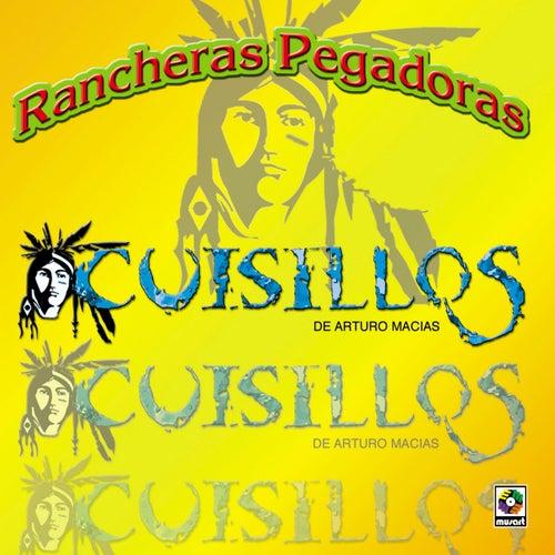 Play & Download Rancheras Pegadoras by Banda Cuisillos | Napster